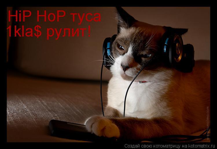 Котоматрица: HiP HoP туса 1kla$ рулит!