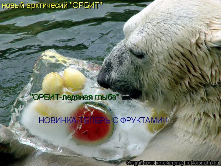 """Котоматрица: новый арктичесий """"ОРБИТ"""" """"ОРБИТ-ледяная глыба"""" НОВИНКА-ТЕПЕРЬ С ФРУКТАМИ!!"""