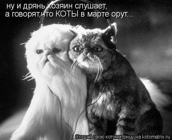 Котоматрица: ну и дрянь хозяин слушает, а говорят,что КОТЫ в марте орут...