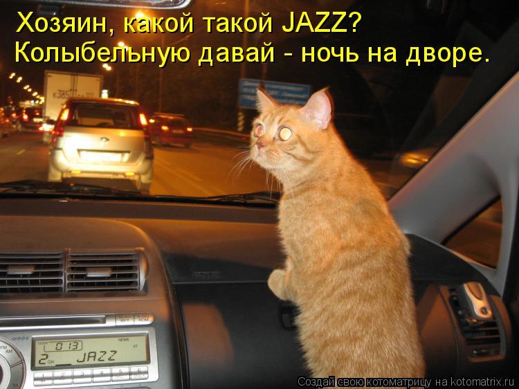 Котоматрица: Хозяин, какой такой JAZZ? Колыбельную давай - ночь на дворе.