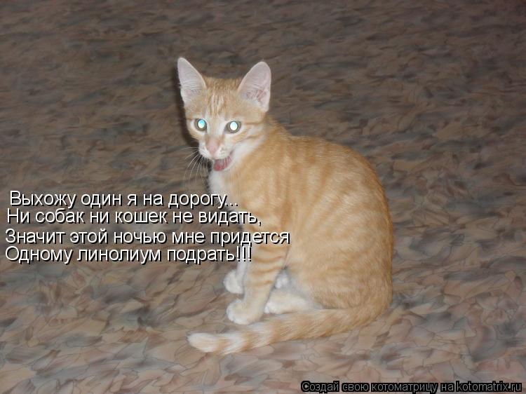 Котоматрица: Выхожу один я на дорогу... Ни собак ни кошек не видать, Значит этой ночью мне придется Одному линолиум подрать!!!