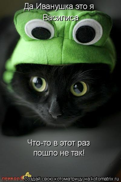 Котоматрица: Да Иванушка это я Василиса Что-то в этот раз пошло не так!