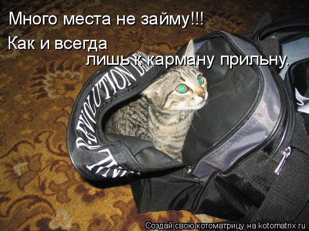 Котоматрица: Много места не займу!!! Как и всегда  лишь к карману прильну.