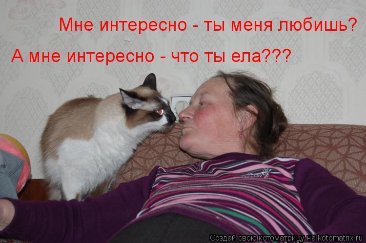 Котоматрица: Мне интересно - ты меня любишь? А мне интересно - что ты ела???