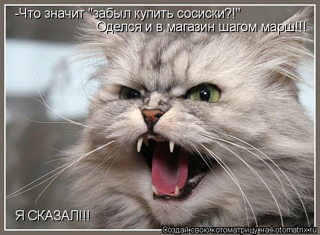 """Котоматрица: -Что значит """"забыл купить сосиски?!"""" Оделся и в магазин шагом марш!!! Я СКАЗАЛ!!!"""