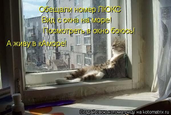 Котоматрица: Обещали номер ЛЮКС Вид с окна на море! Посмотреть в окно боюсь! А живу в кАморе!