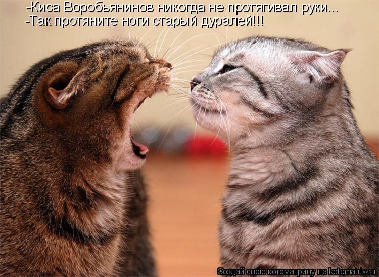 Котоматрица: -Киса Воробьянинов никогда не протягивал руки... -Так протяните ноги старый дуралей!!!