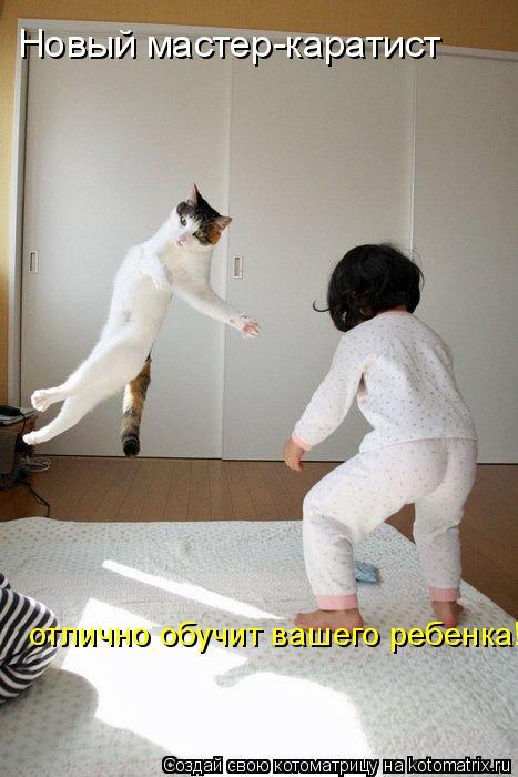 Котоматрица: Новый мастер-каратист отлично обучит вашего ребенка!