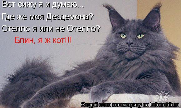 Котоматрица: Вот сижу я и думаю... бплалпр Где же моя Дездемона? Отелло я или не Отелло? Блин, я ж кот!!!