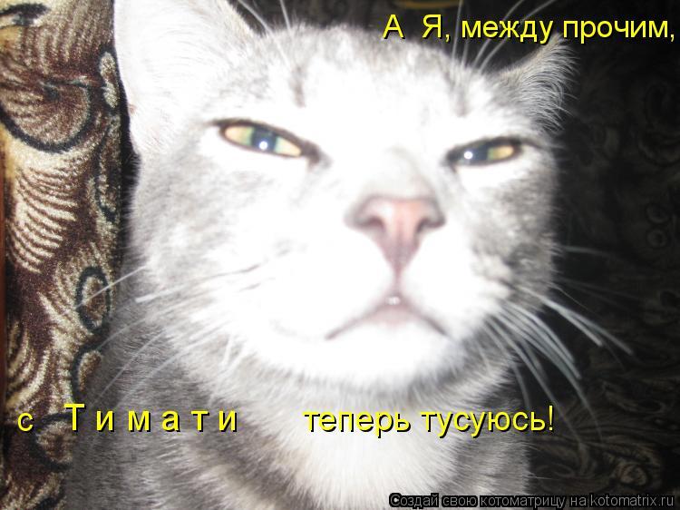Котоматрица: А  Я, между прочим,  Т и м а т и  с теперь тусуюсь!