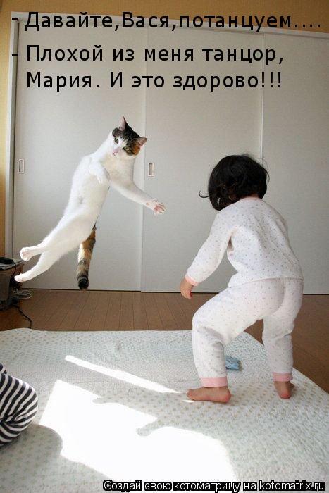 Котоматрица: Давайте,Вася,потанцуем.... Плохой из меня танцор, Мария. И это здорово!!! - -