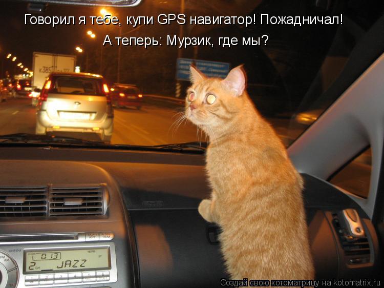 Котоматрица: Говорил я тебе, купи GPS навигатор! Пожадничал! А теперь: Мурзик, где мы?