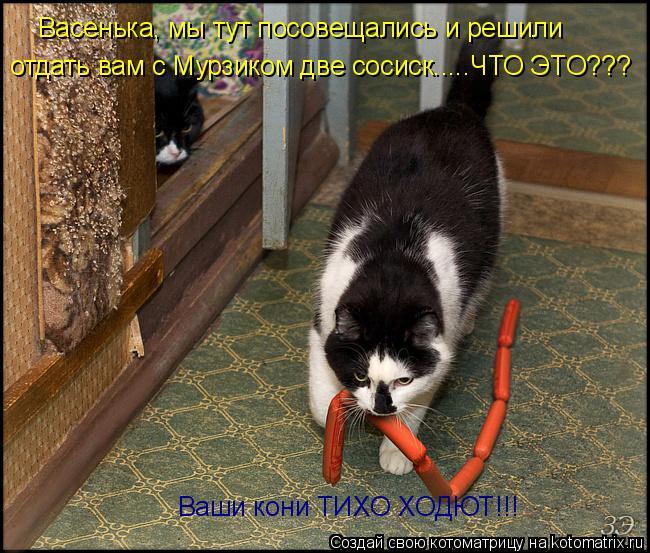 Котоматрица: Васенька, мы тут посовещались и решили отдать вам с Мурзиком две сосиск.....ЧТО ЭТО??? Ваши кони ТИХО ХОДЮТ!!!
