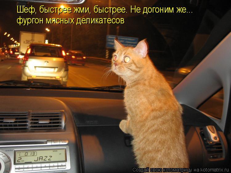 Котоматрица: Шеф, быстрее жми, быстрее. Не догоним же... фургон мясных деликатесов