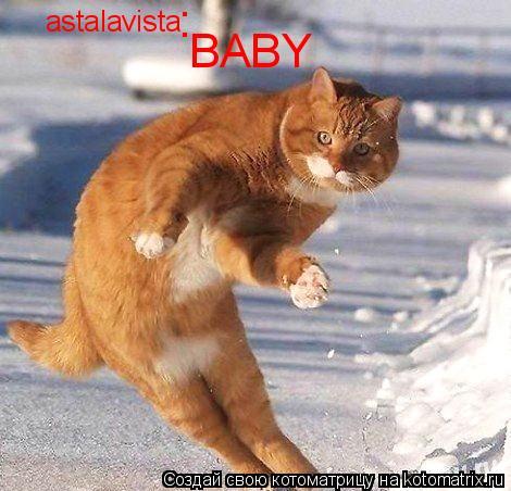 Котоматрица: astalavista   BABY :