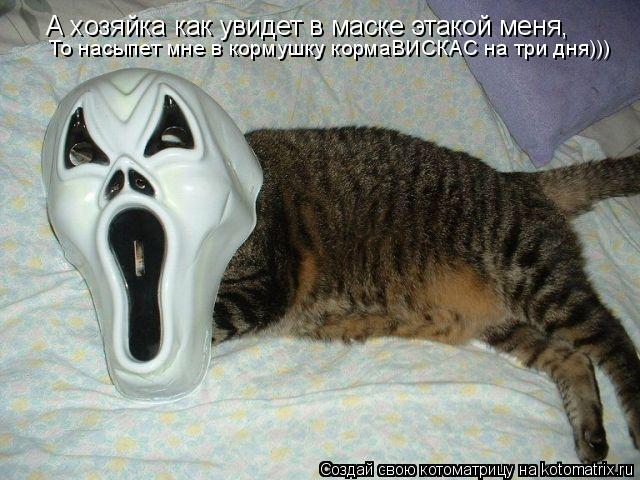 Котоматрица: А хозяйка как увидет в маске этакой меня, То насыпет мне в кормушку кормаВИСКАС на три дня)))
