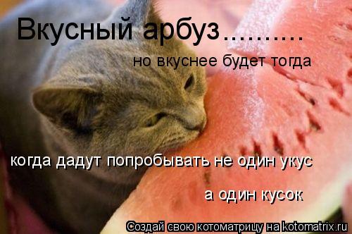 Котоматрица: Вкусный арбуз .......... но вкуснее будет тогда когда дадут попробывать не один укус а один кусок