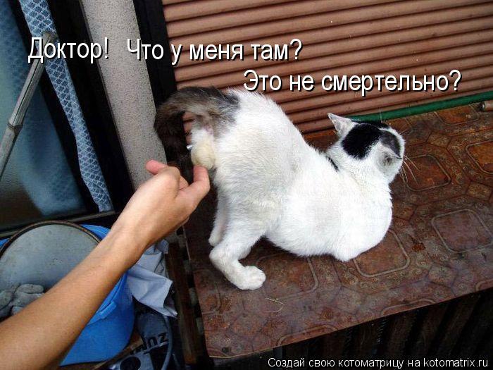 Котоматрица: Доктор! Что у меня там? Это не смертельно?