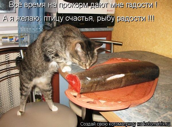 Котоматрица: Всё время на прокорм дают мне гадости ! А я желаю: птицу счастья, рыбу радости !!!