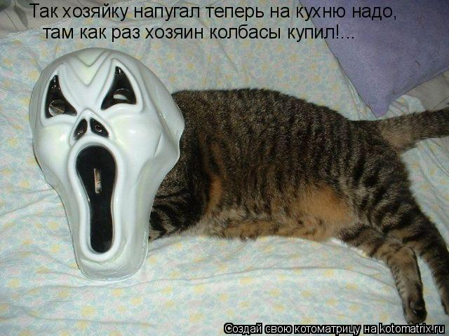 Котоматрица: Так хозяйку напугал теперь на кухню надо, там как раз хозяин колбасы купил!...