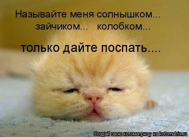 Котоматрица: Называйте меня солнышком... зайчиком...   колобком... только дайте поспать....