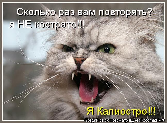 Котоматрица: Сколько раз вам повторять? я НЕ кострато!!! Я Калиостро!!!