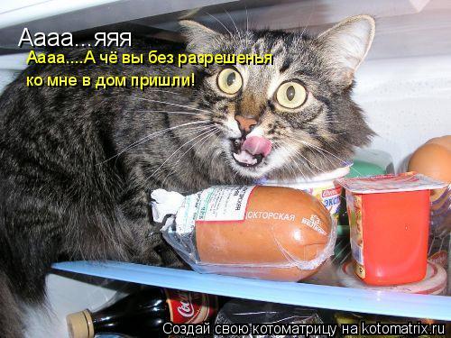 Котоматрица: Аааа...яяя Аааа....А чё вы без разрешенья  ко мне в дом пришли!