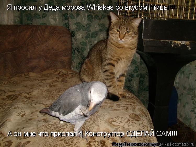 Котоматрица: Я просил у Деда мороза Whiskas со вкусом птицы!!! А он мне что прислал?! Конструктор СДЕЛАЙ САМ!!!
