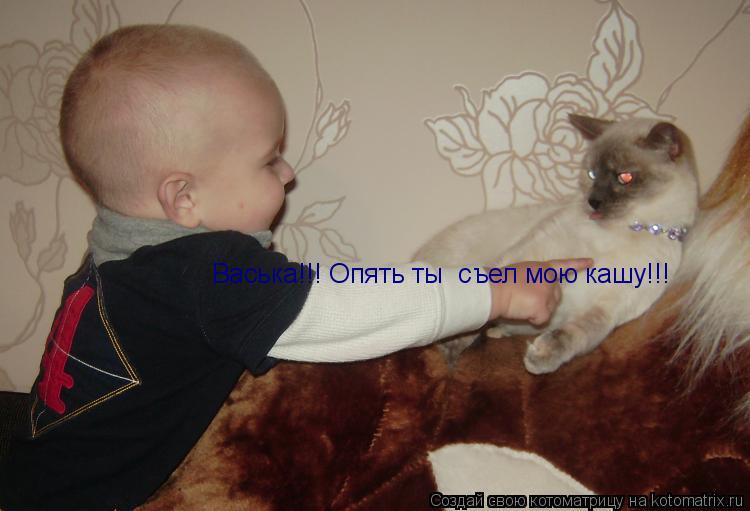 Котоматрица: Васька!!! Опять ты  съел мою кашу!!!