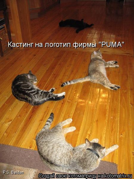 "Котоматрица: Кастинг на логотип фирмы ""PUMA"" P.S. Baldun"