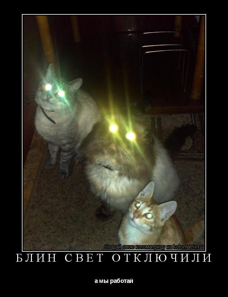 Котоматрица: блин свет отключили а мы работай