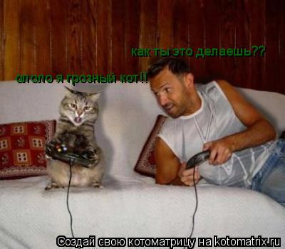 Котоматрица: как ты это делаешь?? ололо я грозный кот!!