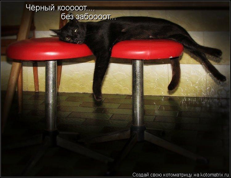 Котоматрица: Чёрный кооооот.... без забоооот...