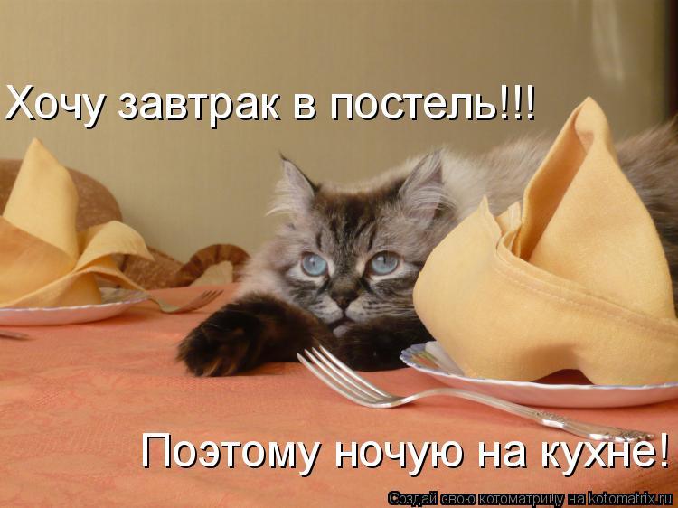Котоматрица: Хочу завтрак в постель!!! Поэтому ночую на кухне!