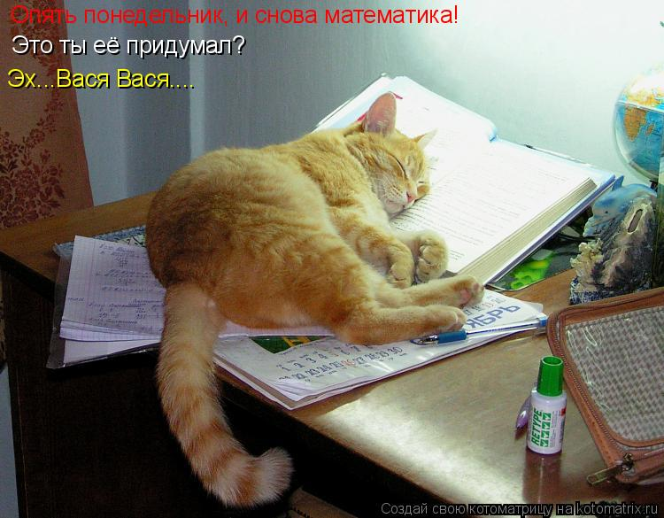 Котоматрица: Опять понедельник, и снова математика! Это ты её придумал? Эх...Вася Вася....