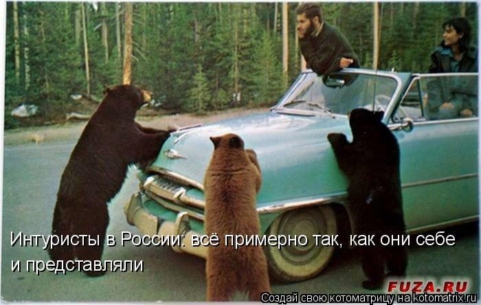 Котоматрица: Интуристы в России: всё примерно так, как они себе и представляли
