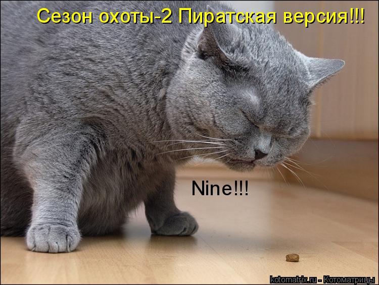 Котоматрица: Сезон охоты-2 Пиратская версия!!! Nine!!!