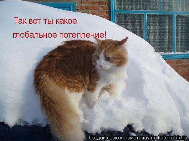Котоматрица: Так вот ты какое,  глобальное потепление!