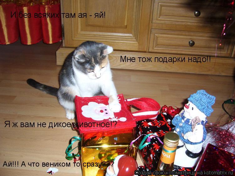 Котоматрица: И без всяких там ая - яй! Мне тож подарки надо!! Я ж вам не дикое животное!? Ай!!! А что веником то сразу???