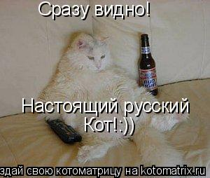 Котоматрица: Сразу видно! Настоящий русский  Кот!:))