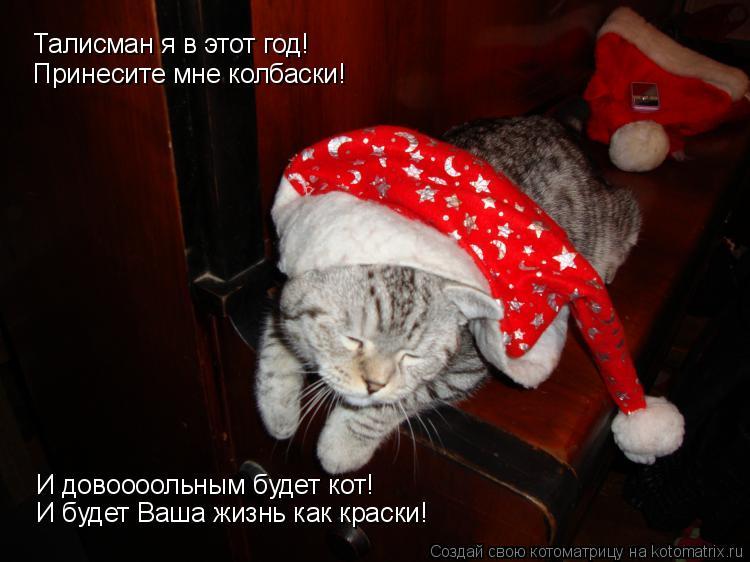 Котоматрица: Талисман я в этот год! Принесите мне колбаски! И довоооольным будет кот! И будет Ваша жизнь как краски!