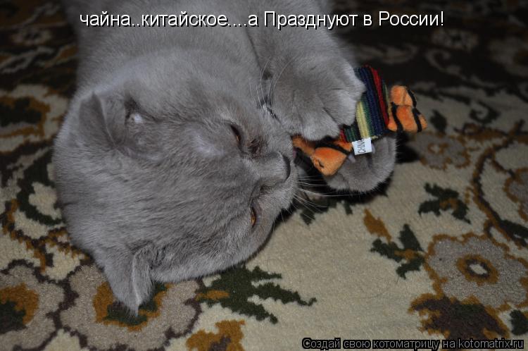 Котоматрица: чайна..китайское....а Празднуют в России!