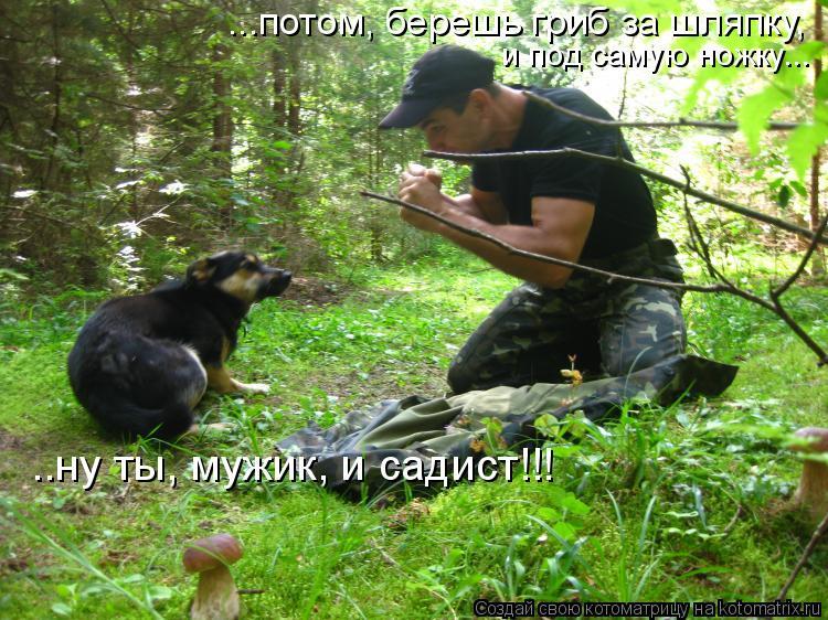 Котоматрица: ...потом, берешь гриб за шляпку,  и под самую ножку... ..ну ты, мужик, и садист!!!