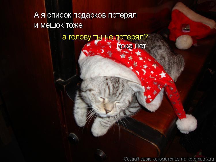 Котоматрица: А я список подарков потерял и мешок тоже а голову ты не потерял? пока нет