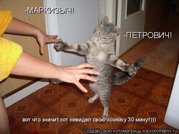 Котоматрица: -ПЕТРОВИЧ! -МАРКИЗЫЧ! вот что значит,кот невидел свою хозяйку 30 минут)))