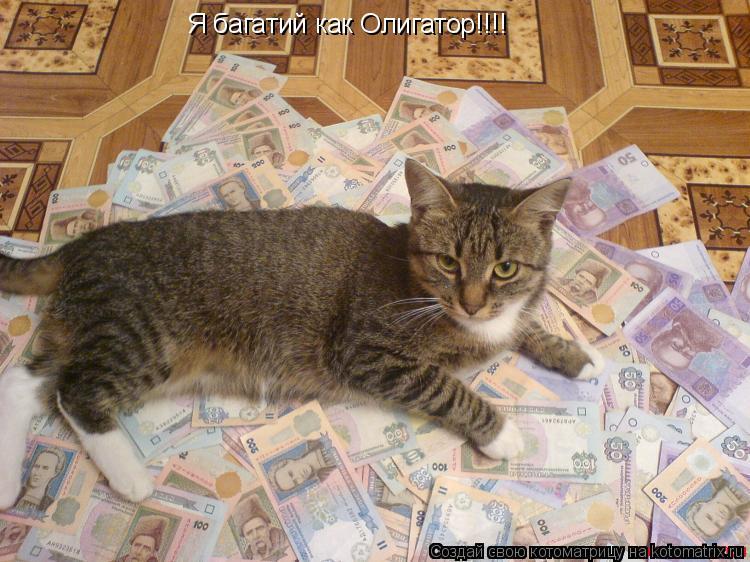 Котоматрица: Я багатий как Олигатор!!!!