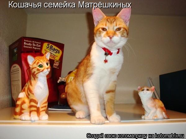Котоматрица: Кошачья семейка Матрёшкиных
