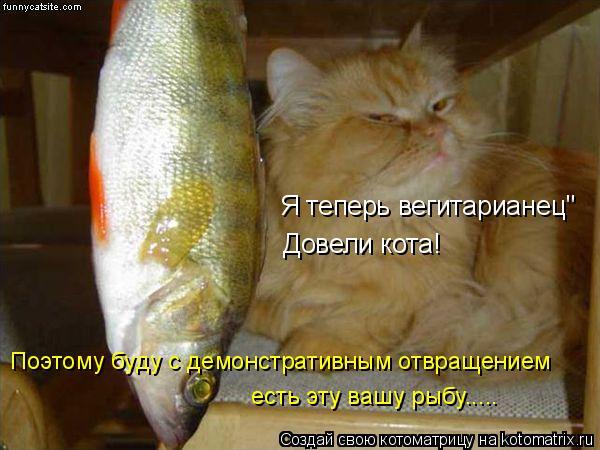 """Котоматрица: Я теперь вегитарианец"""" Поэтому буду с демонстративным отвращением есть эту вашу рыбу..... Довели кота!"""