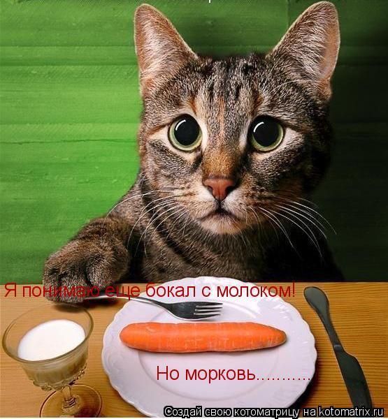 Котоматрица: Я понимаю еще бокал с молоком! Но морковь...........