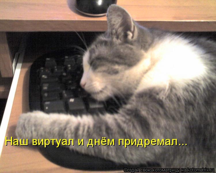 Котоматрица: Наш виртуал и днём придремал...